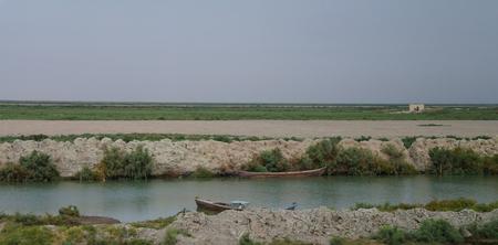 Mesopotamian Marshes, habitat of Marsh Arabs aka Madans, near Basra Iraq