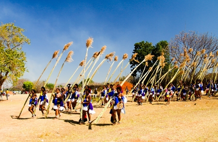 Women in traditional costumes marching at the Umhlanga aka Reed Dance ceremony - 01-09-2013 Lobamba, Swaziland Banco de Imagens - 84844179