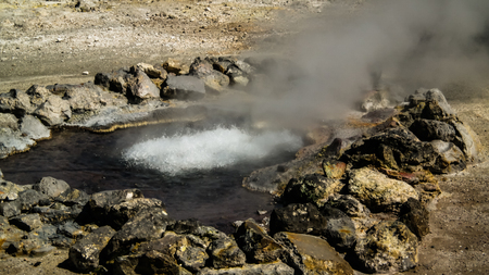 Geothermal fields near Furnas lake at Sao Miguel, Azores, portugal