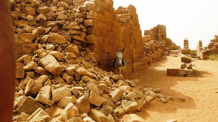 Panorama of Musawwarat es-Sufra ruins with donkey at Meroe, Sudan