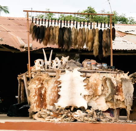 At the Woodoo market in Ouidah, Benin