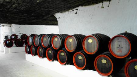Barrels in the wine cellar of Cricova in Moldova Foto de archivo