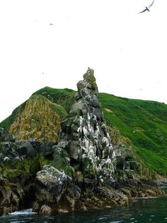 Landscape to Starichkov island at Avachinskaya bay in Kamchatka, Russia 写真素材