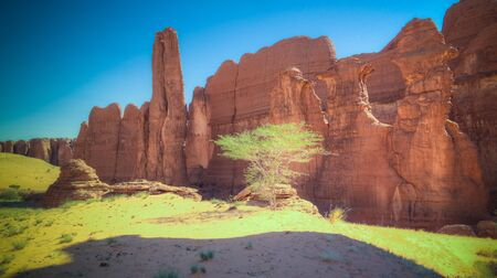 Abstract Rock formation at plateau Ennedi aka stone forest , Chad