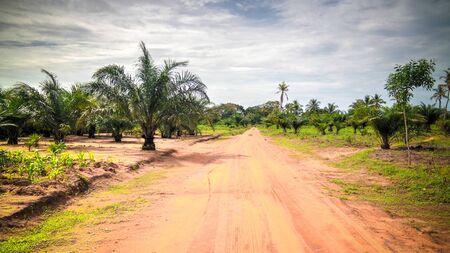 woodoo Village of Ewe aka Gen people near Anfoin, Togo