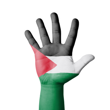 Open hand raised, Palestine flag painted photo