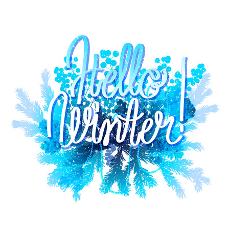 snowflacke: Hello winter. Holly leaves and berries, coniferous branches and cones in blue colors. Vector design isolated on white background