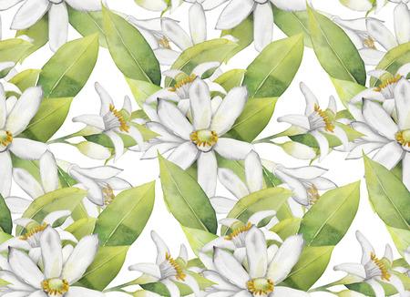 Watercolor white lemon flowers. Seamless floral pattern.
