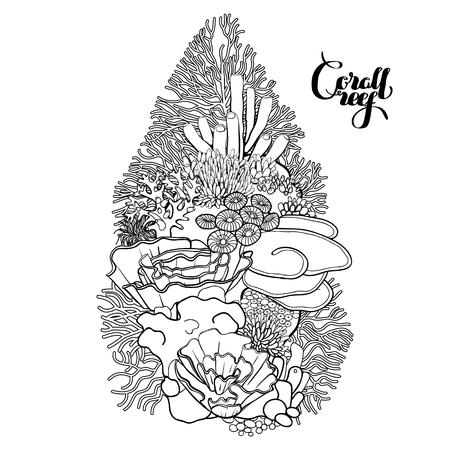 Arrecife De Coral Con Peces Gráfico Del Caballo De Mar Del Océano Y ...