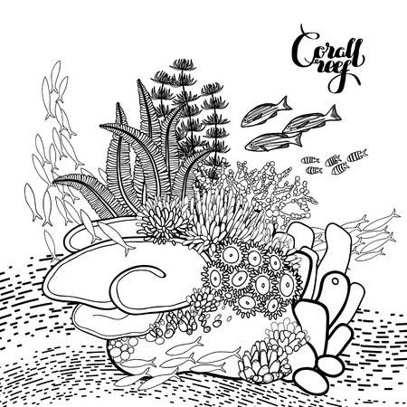 ocean plants: Coral reef  in line art style.. Ocean plants and rocks isolated on white. Coloring page design.