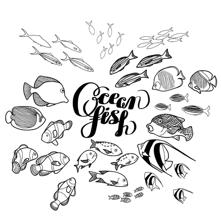 butterflyfish: Collection of  ocean fish drawn in line art style isolated on white. Coloring page design.