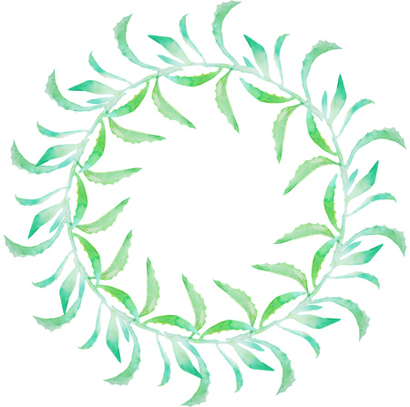 flower decoration: Watercolor succulent wreath isolated on white background. Cute floral element. Wedding design