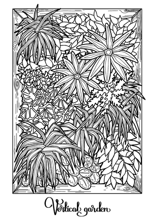 vertical garden: Vertical garden drawn in a line art style. Vertical oriented vector card in black and white colors. Coloring book page design. Stock Photo