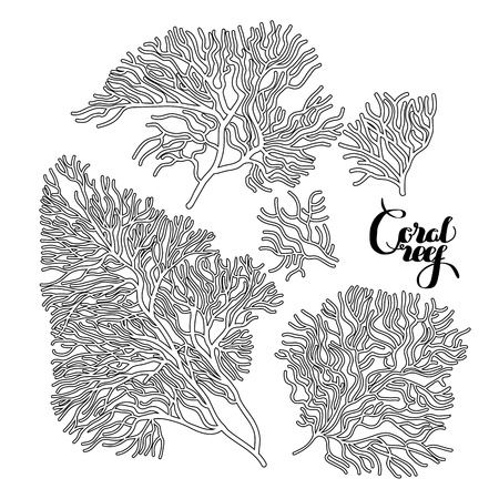 Collection of corals drawn in line art style. Ocean design elements isolated on white background