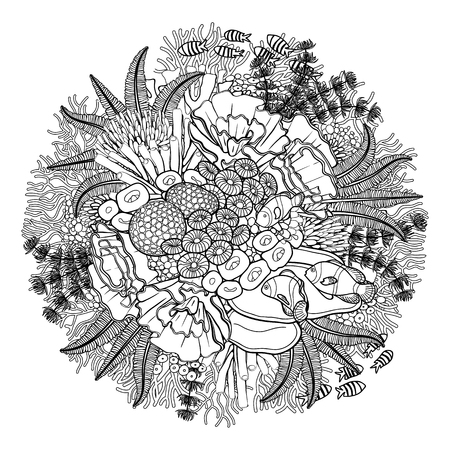 Coral reef drawn in a line art style. Ocean plants and rocks isolated on white background. Coloring book page design.