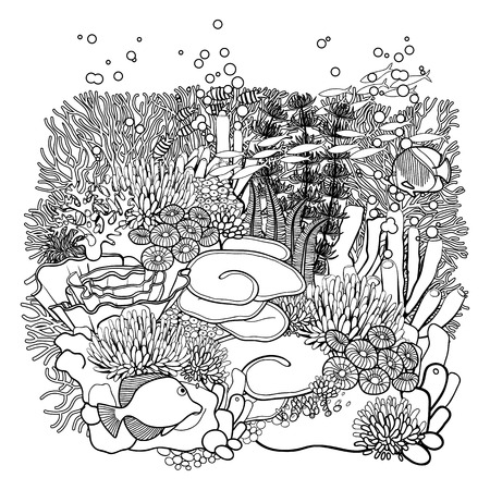 ocean plants: Coral reef  in line art style. Ocean plants and rocks isolated on white. Coloring page design.