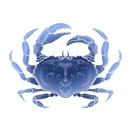 hand line fishing: Graphic vector crab drawn in line art style. Sea and ocean creature in blue colors. Top view. Seafood element. Coloring book page design
