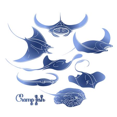 Grafische kramp vissen collectie getekend in lijn art stijl. Vector elektrische Manta ray op een witte achtergrond. Zee en oceaan wezens in blauwe kleuren. Kleurboek pagina-ontwerp Stock Illustratie