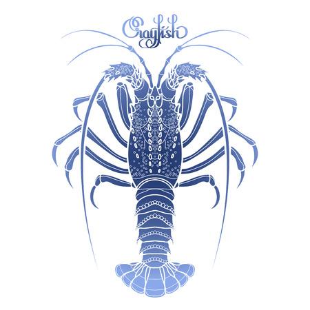 ライン アート スタイルで描かれたグラフィックス ベクター ザリガニ。とげのあるまたはロッキーのロブスター。青い色の海と海の生き物。平面図