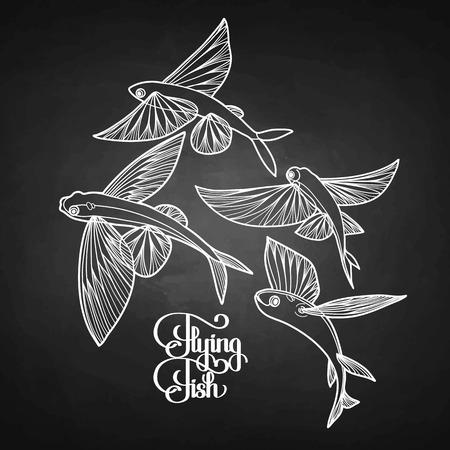 collection de poissons volants graphique dessiné dans le style d'art en ligne. Mer et océan créature isolé sur tableau noir