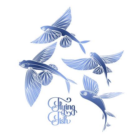 collection de poissons volants graphique dessiné dans le style d'art en ligne. Mer et océan créature isolé sur fond blanc. conception Coloriage page du livre
