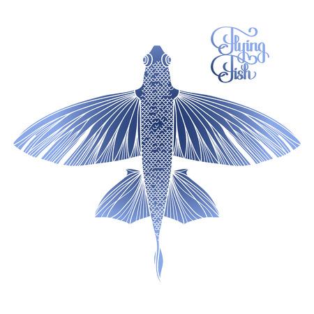 poissons volants graphique dessinée dans le style d'art en ligne. Vue de dessus. Mer et océan créature isolé sur fond blanc. conception Coloriage page du livre