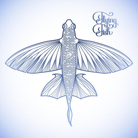 poissons volants graphique dessinée dans le style d'art en ligne. Vue de dessus. Mer et océan créature isolé sur fond blanc. conception Coloriage page du livre Vecteurs