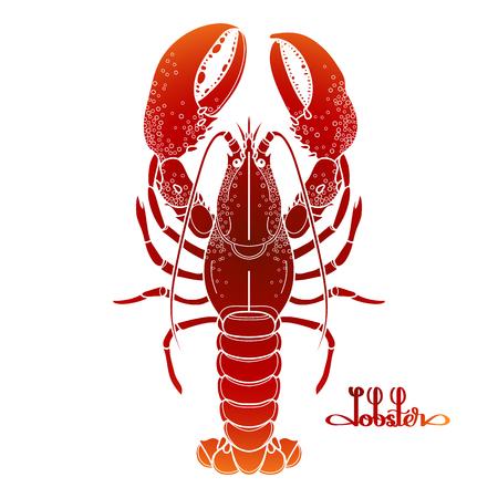 Graphique homard vecteur dessiné dans le style d'art en ligne. Mer et océan créature isolé sur fond blanc dans des couleurs rouges. Vue de dessus. élément de fruits de mer. conception Coloriage page du livre