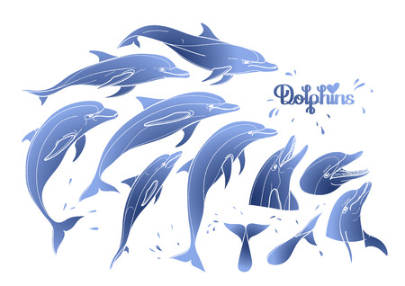 sillhouette: Graphic dolphins collection isolated on white background. Sea and ocean vector creatures in blue colors