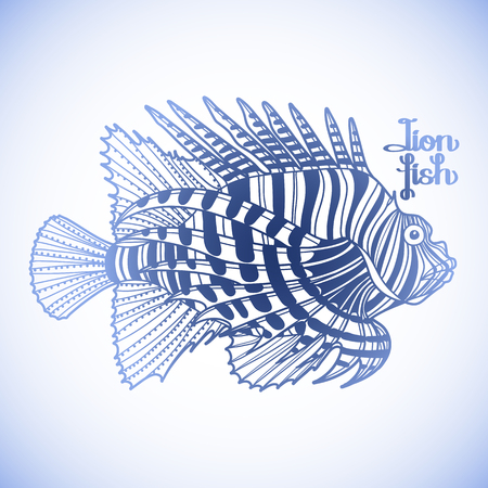 zebra lionfish: Graphic vector lion fish isolated on white background. Sea and ocean creature in blue colors. Coloring book page design Illustration