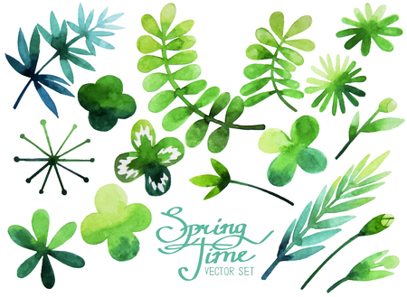 Spring set of watercolor plants. Vector leaves, flowers and branches isolated on white background Vektorové ilustrace