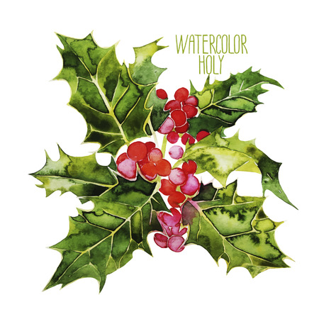 foxberry: Watercolor vector cranberries isolated on white background Illustration