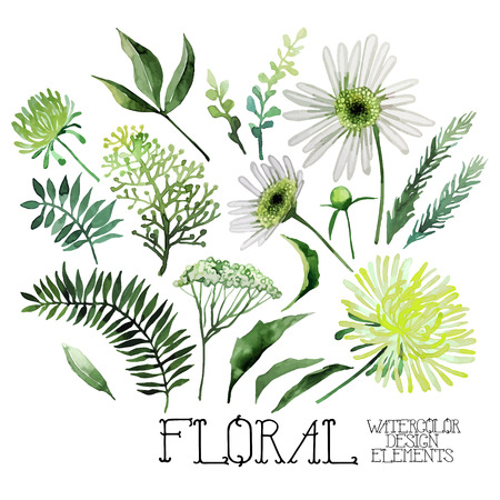 Huge watercolor green floral collection isolated on white background. Vector floral design Ilustracja