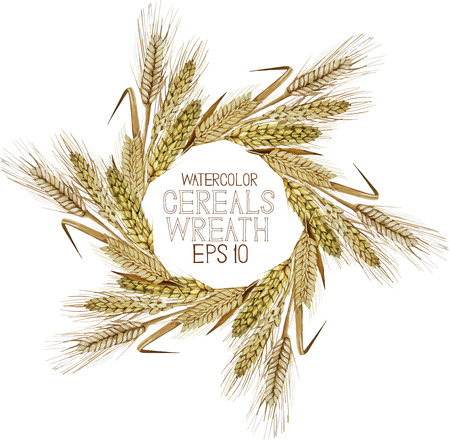 Watercolor cereal wreath. Wheat, barley and rye. Vector frame