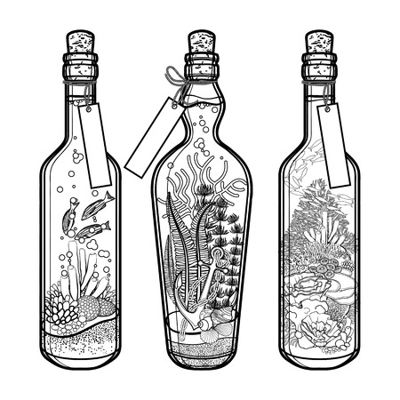 Ocean flora and fauna in bottles. Travel memories collection. Marine plants and fish isolated on white background. Coloring book page design Çizim
