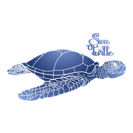 graphic art: Graphic Hawksbill sea turtle drawn in line art style. Ocean vector creature in blue colors isolated on white background. Side view. Coloring book page design Illustration