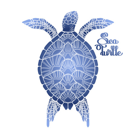 Graphic Hawksbill sea turtle drawn in line art style. Ocean vector creature in blue colors isolated on white background. Top view. Coloring book page design Illustration