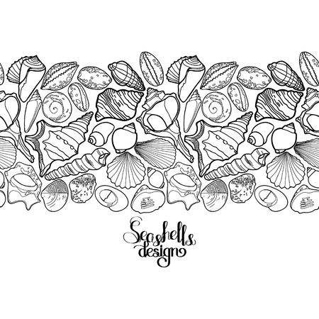 Collection of seashells drawn in line art style on white background. Ocean endless vector border. Coloring page design.