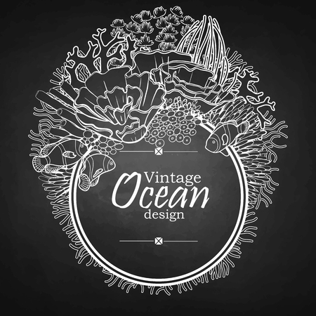 flora fauna: Vintage graphic card with ocean flora and fauna with circle frame.  Fish,  seaweed and corals drawn in line art style on chalkboard