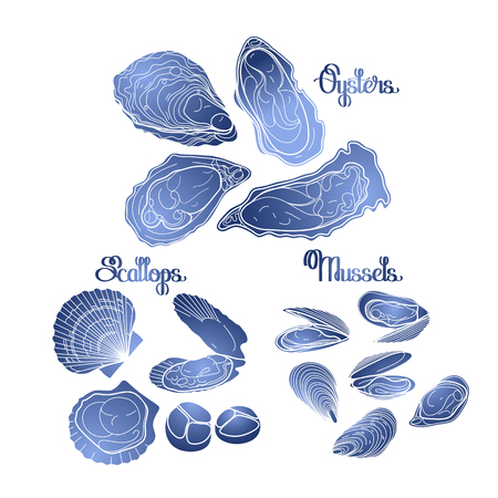 sihouette: Graphic vector mussels, oysters and scallops drawn in line art style in blue colors. Sea and ocean isolated clams.  Seafood ingredients for menu design