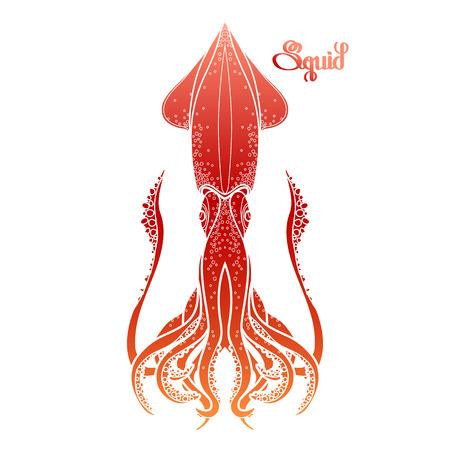 Calamares De Vectores Gráficos Dibujados En Línea Estilo Del Arte ...