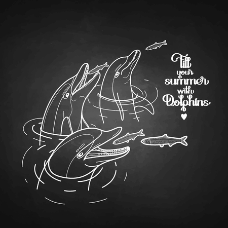 anchovy: Graphic feeding dolphins. Dolphins in the water catching fish. Summer mood. Vector art isolated on chalkboard. Sea and ocean vector creatures in black and white colors