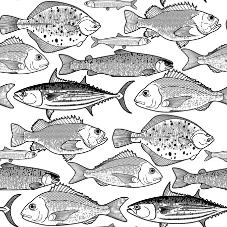Graphic fish seamless pattern drawn in line art style. Sea and ocean creatures on white background. Vector element for seafood menu design
