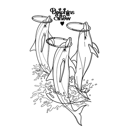 whirling: Graphic dolphins whirling hoops on their noses. Summer water performance. Sea and ocean vector creatures in black and white colors. Vector isolated art. Coloring book page design