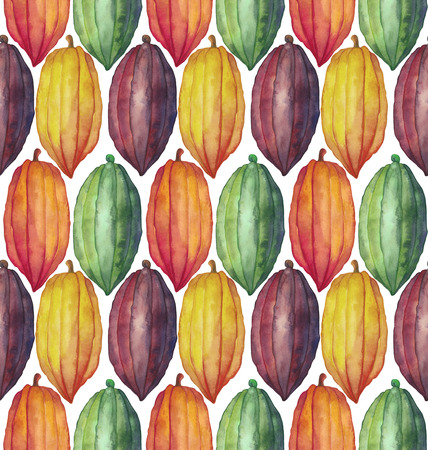 cocoa fruit: Watercolor cocoa fruit seamless pattern. Hand drawn exotic colorful cacao plants