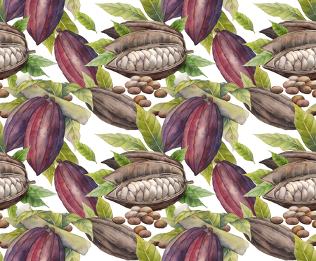 cocoa fruit: Watercolor cocoa fruit seamless pattern. Hand drawn exotic cacao  plants
