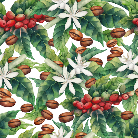 Watercolor coffee seamless pattern isolated on white background. Hand painted leaves, flowers and beans