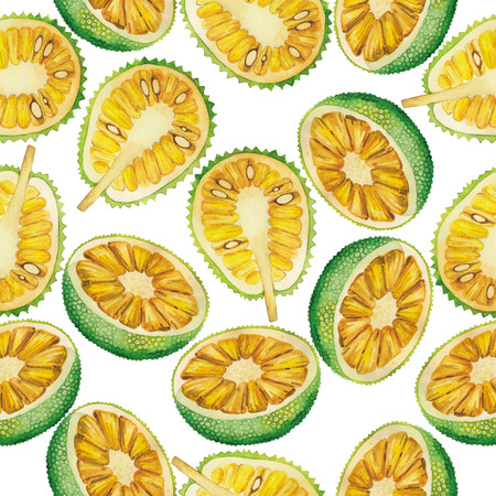 Watercolor breadfruit and jackfruit seamless pattern. Hand painted exotic fruits Stock Photo