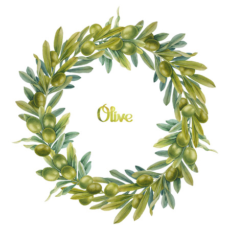 green olive: Watercolor green olive wreath. Hand painted natural design Stock Photo