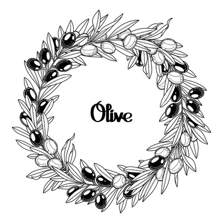 olive wreath: Graphic olive wreath isolated on white background. Vector natural design. Coloring book page design for adult and kid